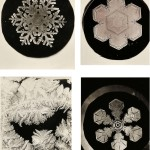 Wilson Alwyn Bentley (American, 1865-1931) Four Photographs: Three of Snowflakes and One of Frost, c. 1885-1931(Lot 133, Estimate: $1,500-2,500)