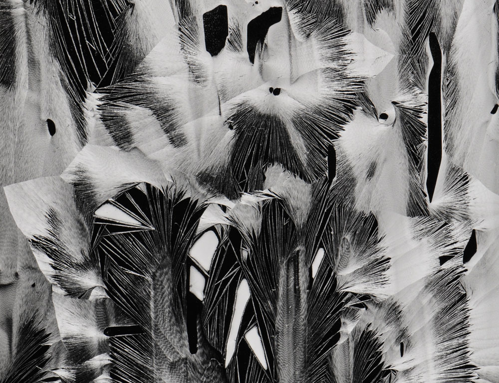 Brett Weston (American, 1911-1993)  Cracked Paint, Garrapata (Lot 107, Estimate $1,000-1,500)